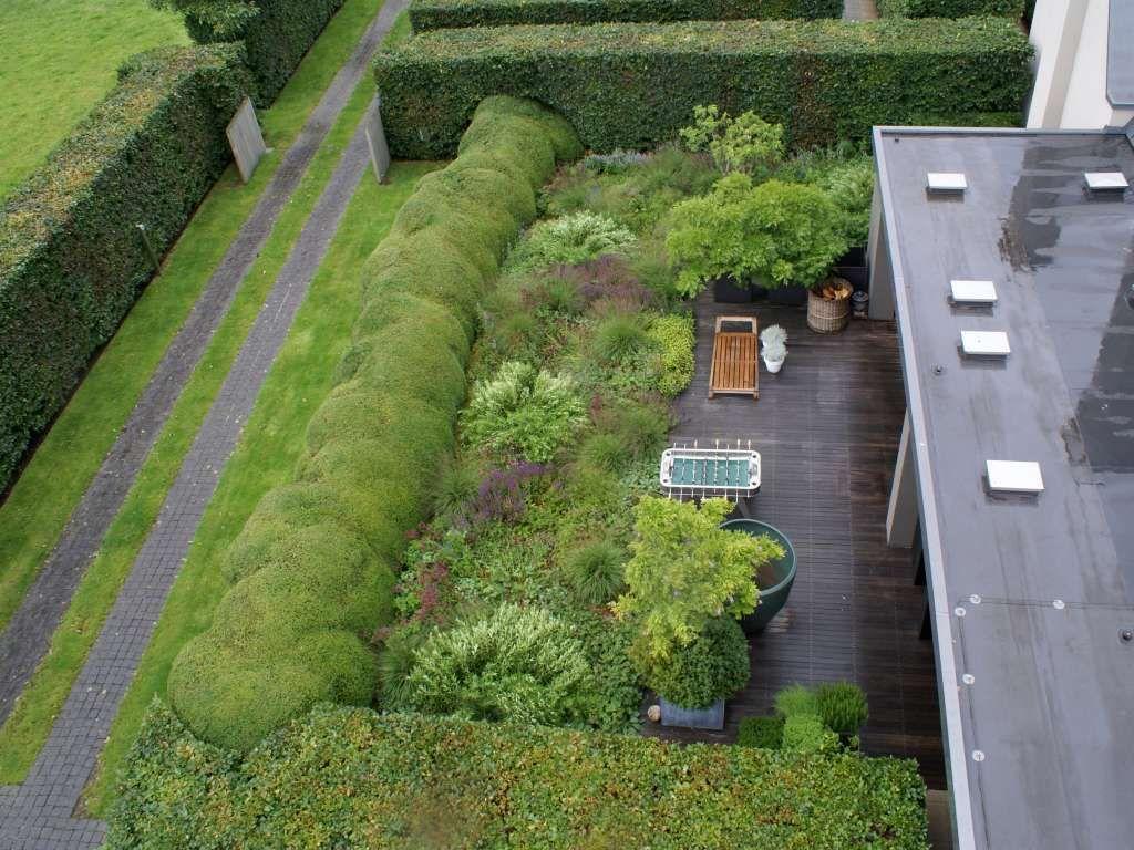 Terassi ja puutarha