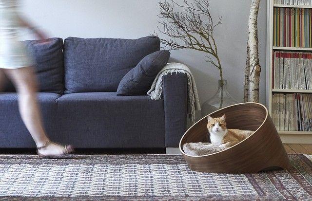 Além de mimarem seu bichinho de estimação, as peças com design descolado ajudam a compôr a decoração da sua casa