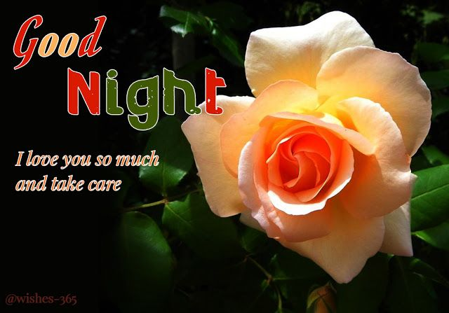 Good Night Romantic Images For Lovers Good Night Sweet Good