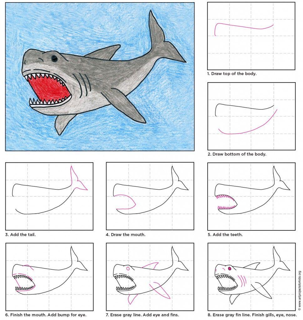 Draw A Megalodon Shark Art Projects For Kids Leer Tekenen Tekenen Voor Kinderen Dieren Tekenen