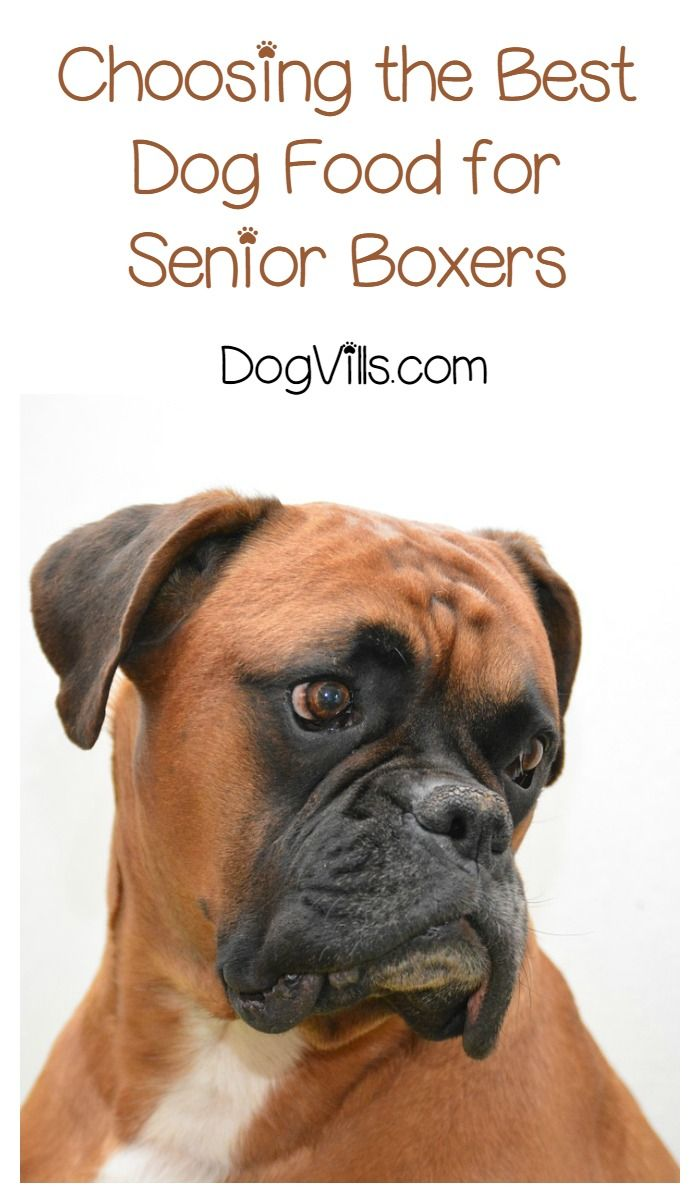 Best Dog Food For Senior Boxers Best Dog Food Dog Food Recipes Boxer Dogs Facts