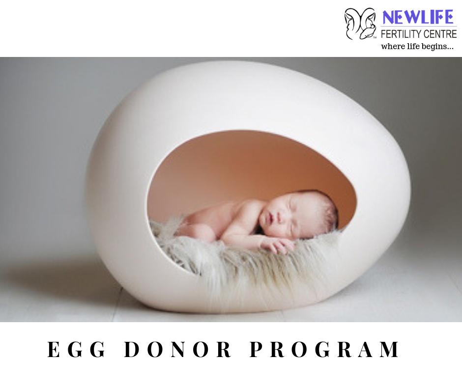 Egg Donation Process, Egg Donation Toronto, Canada