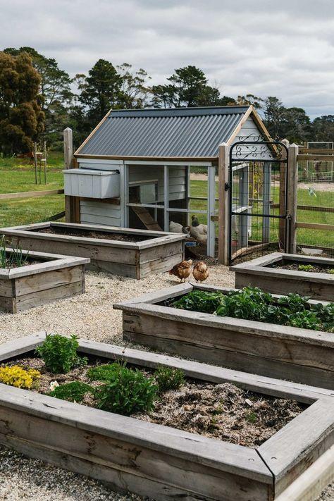 Photo of Provincial Style Garden – Chook House & Gemüse Hochbeete. ,  #chook #garden #ge…