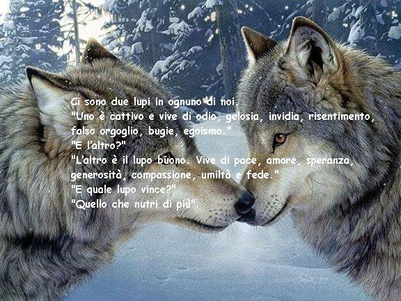 Vignetta Sui Lupi Thoughts Wolf Animals E Quotes
