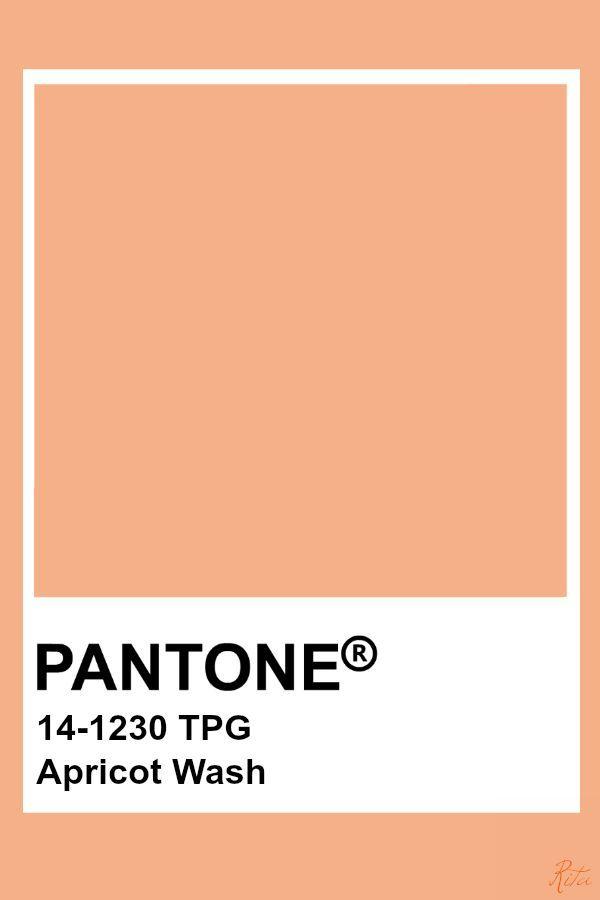 Pantone Wash Apricot Pantone Colour Palettes Pantone Color Pantone Blue