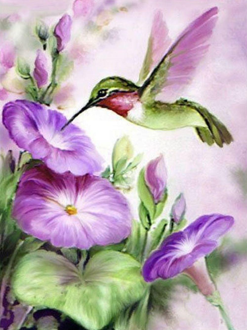 7aab8c0c8f Morning Glory Hummingbird Diamond Painting | $8.95 | FREE Shipping |  Secured Payment Gateway | #Bird #Flower #HomeDecor #Hummingbird  #Morningglory