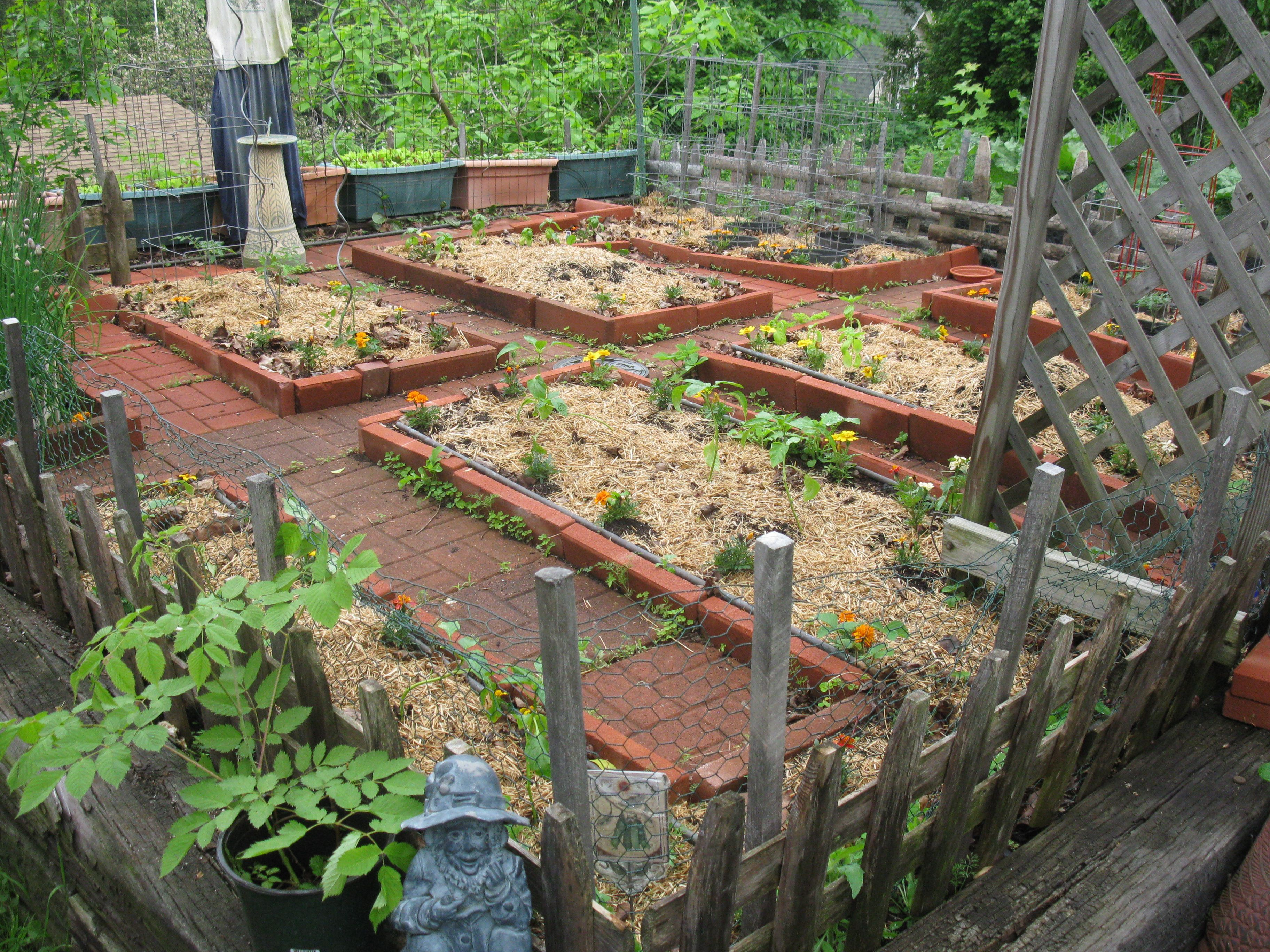 Small Space Vegetable Garden Ideas >>> Click image for ...