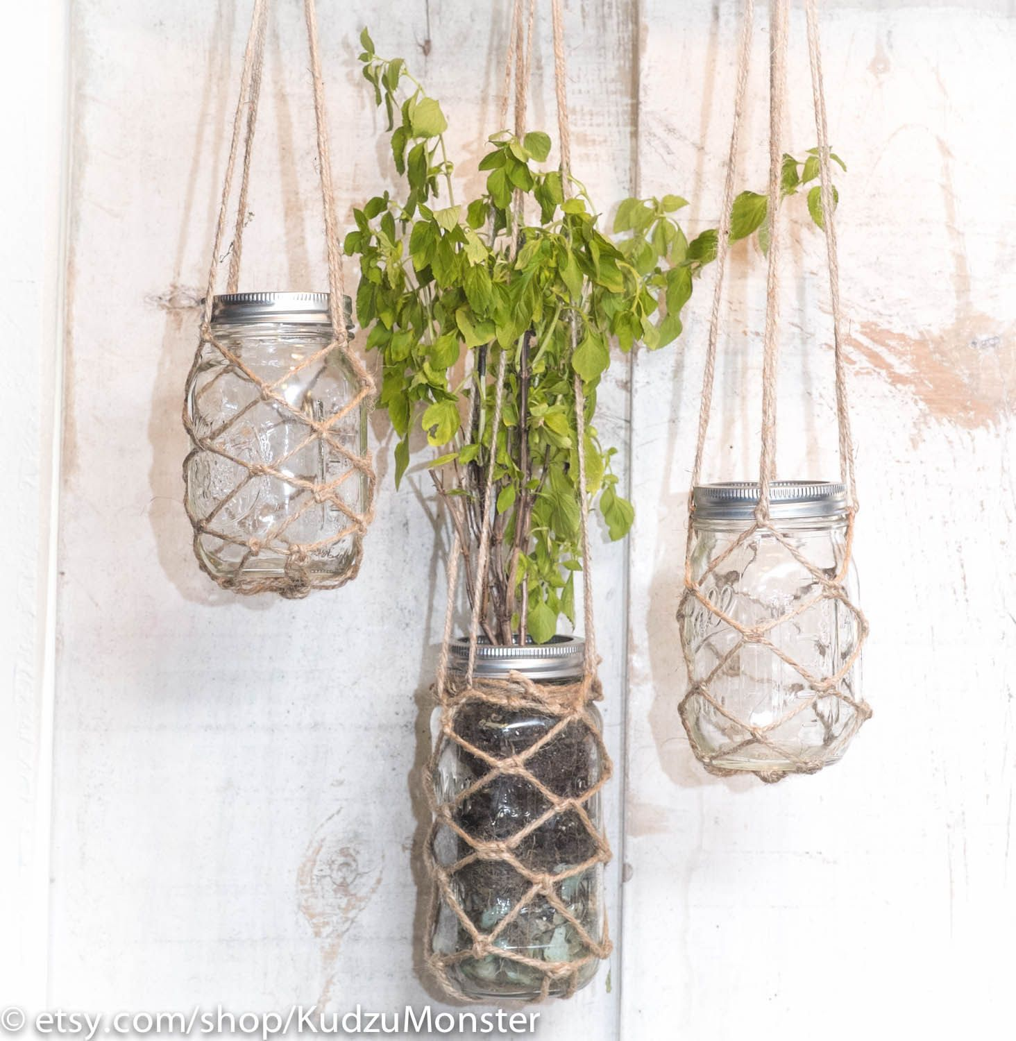 hanging mason jar planter container with hand
