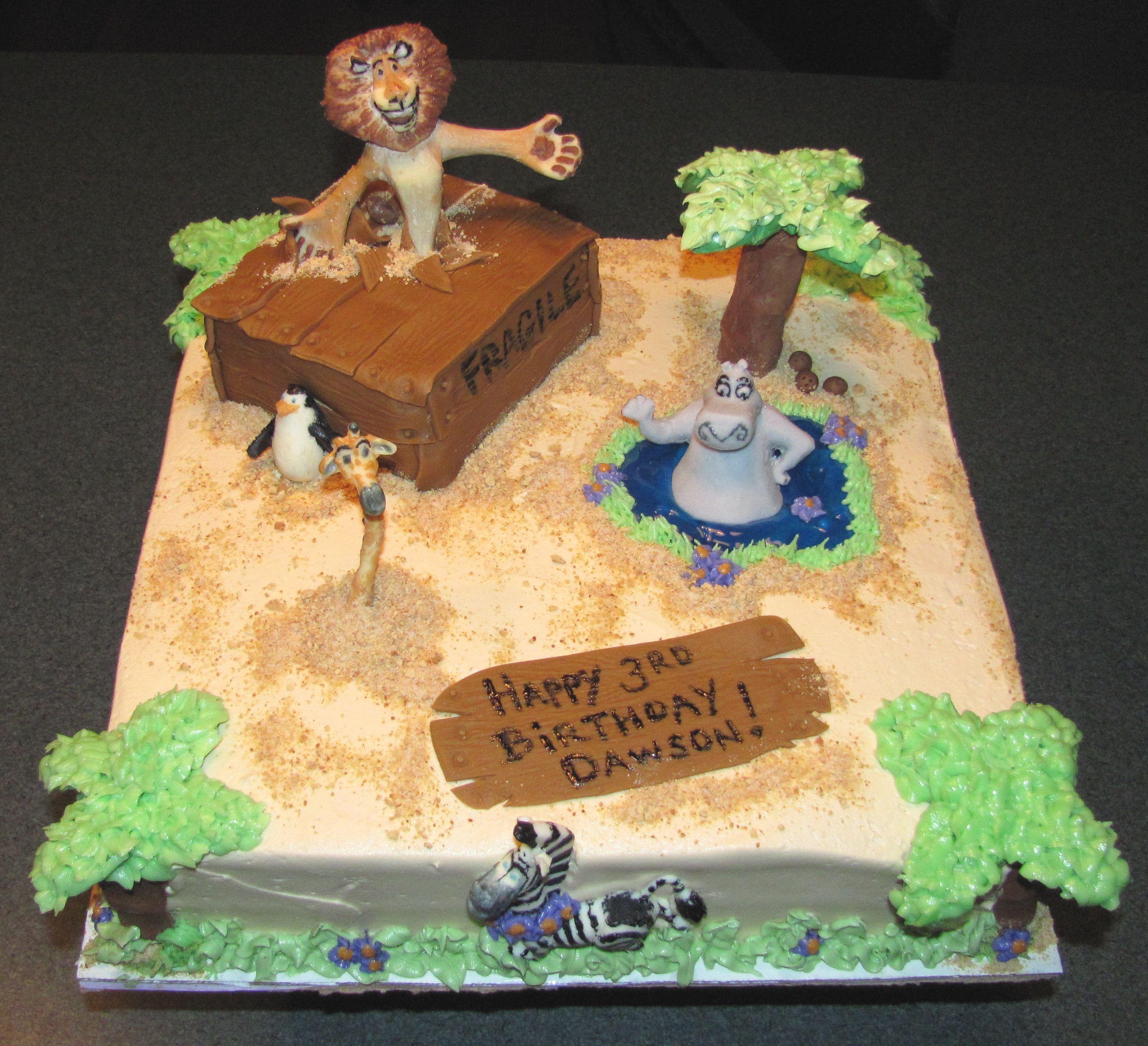 Martys Birthday Cake Madagascar