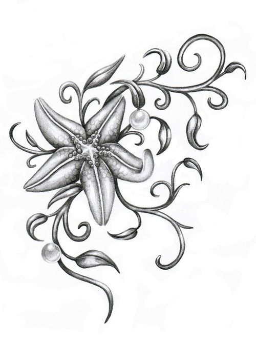 Starfish Tattoos Tattoo Picture Idea Starfish Tattoo Seashell Tattoos Sand Dollar Tattoo