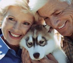 Lomita Pet Hospital - 25445 Narbonne Ave. Lomita, CA 90717 310-325-5850