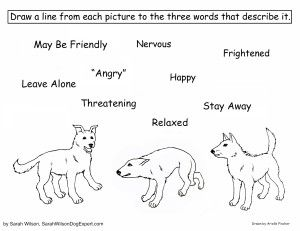 Dog Body Language Coloring Page For Children With Images Dog