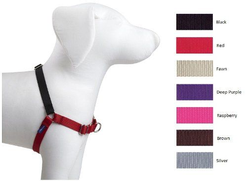 Petsafe Easy Walk Harness Petite Small Fawn And Brown For Dogs To View Further For This Item Visit Easy Walk Harness Easy Walk Dog Harness Dog Harness