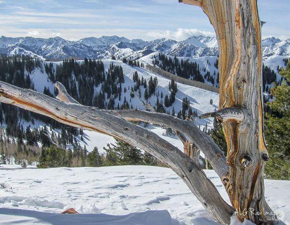 Mountain Nature Landscape Photography Wall Art Print Utah Park City Rustic Winter Seasons Snow Landscape Photography Photography Wall Art Wall Art Prints