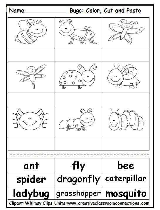 Pin by Zapantarita on Kids craft   Insect activities, Bugs, insects