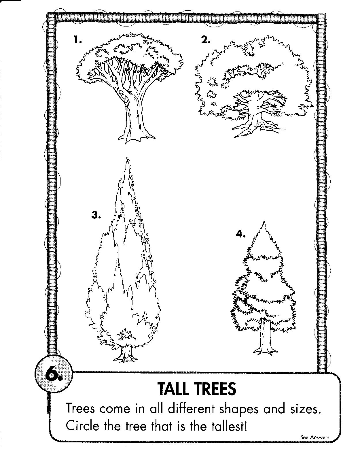 Coloring Pages Habitat Forest 44 Tall Trees Tree Coloring Page Coloring Pages Free Coloring Pages