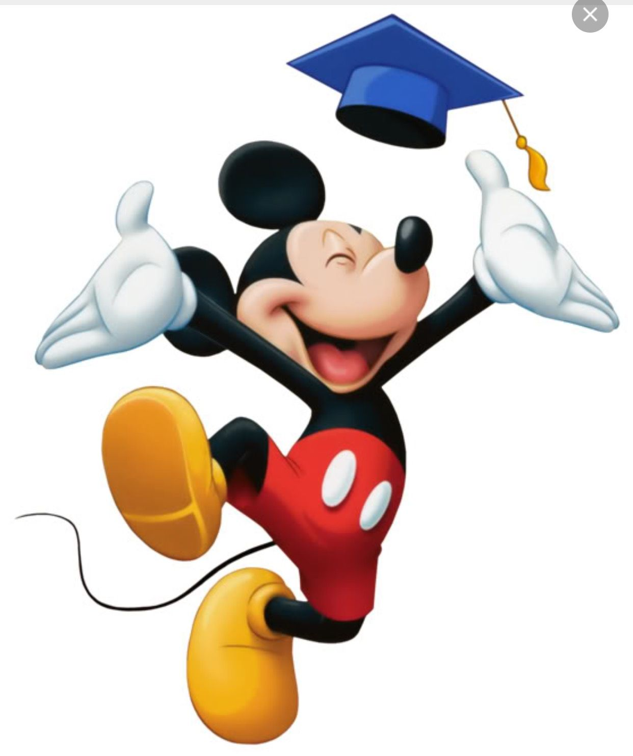 Image result for mickey graduation