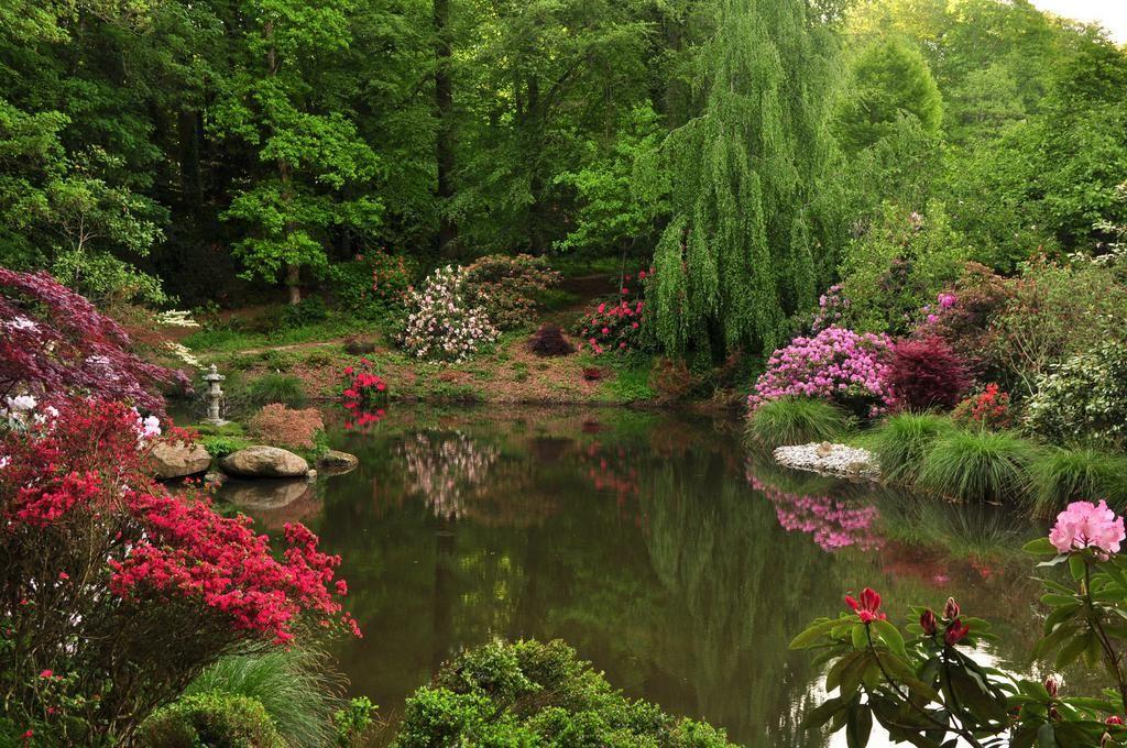 Parc botanique de haute bretagne jardins fran ais pinterest - Parc botanique de haute bretagne ...