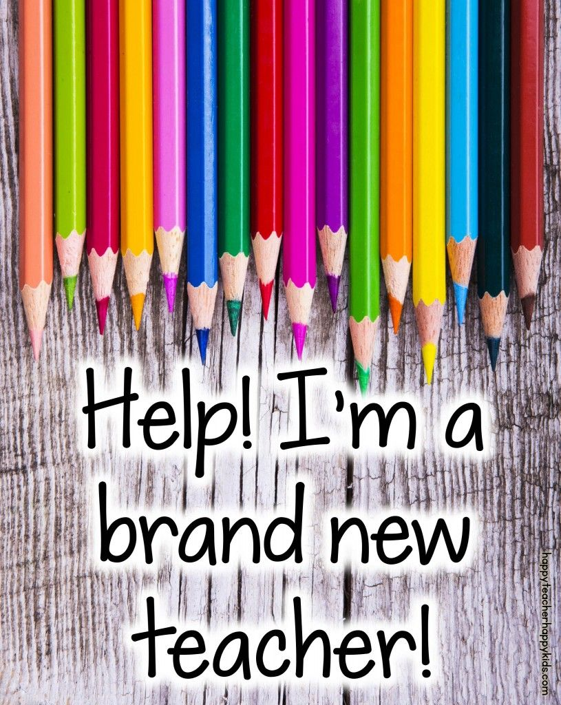Help! I'm a Brand New Teacher- advice & tips for your first