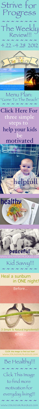 Strive For Progress: The Weekly Review Meal Plan: Gone To The Beach, Kid Savvy: Motivate Your Kids, Be Healthy: Heal A Sunburn In One Night!  www.striveforprog...