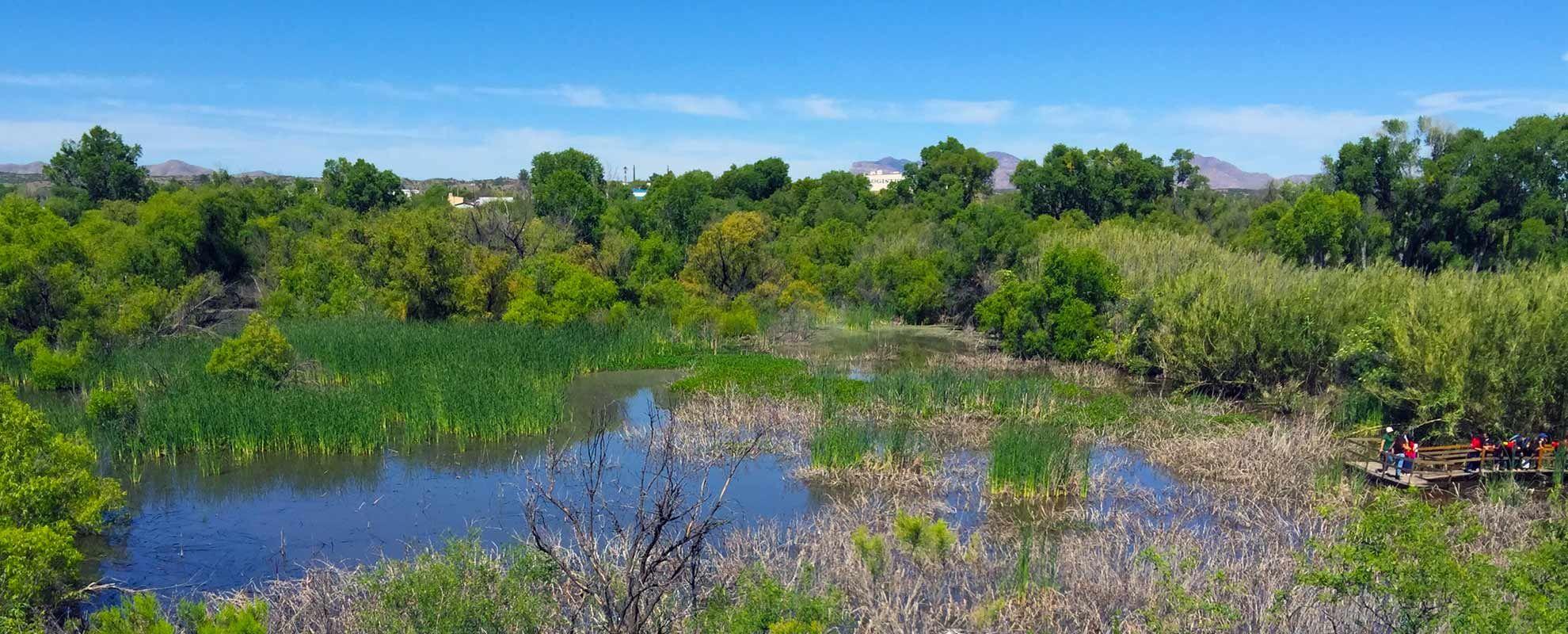 Las Lagunas de Anza-Nogales