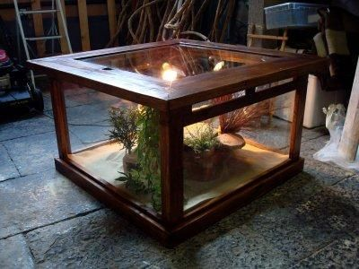 terrarium reptile pinterest. Black Bedroom Furniture Sets. Home Design Ideas