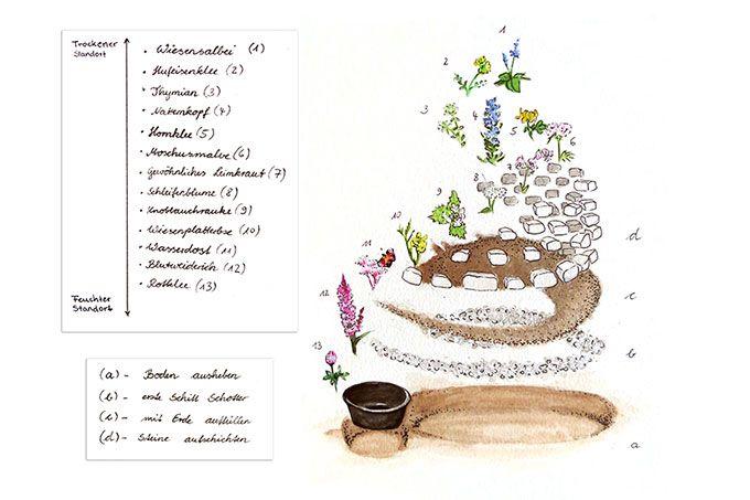 Gonn Dir Garten Nabu Pflanzen Bienenfreundliche Blumen Garten Bepflanzen