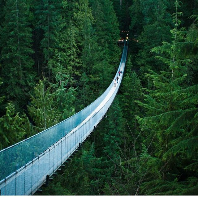 Capilano Suspension Bridge @ Vancouver, BC