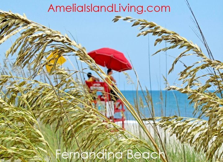 Sea oats line the dunes, red lifeguard chairs dot the