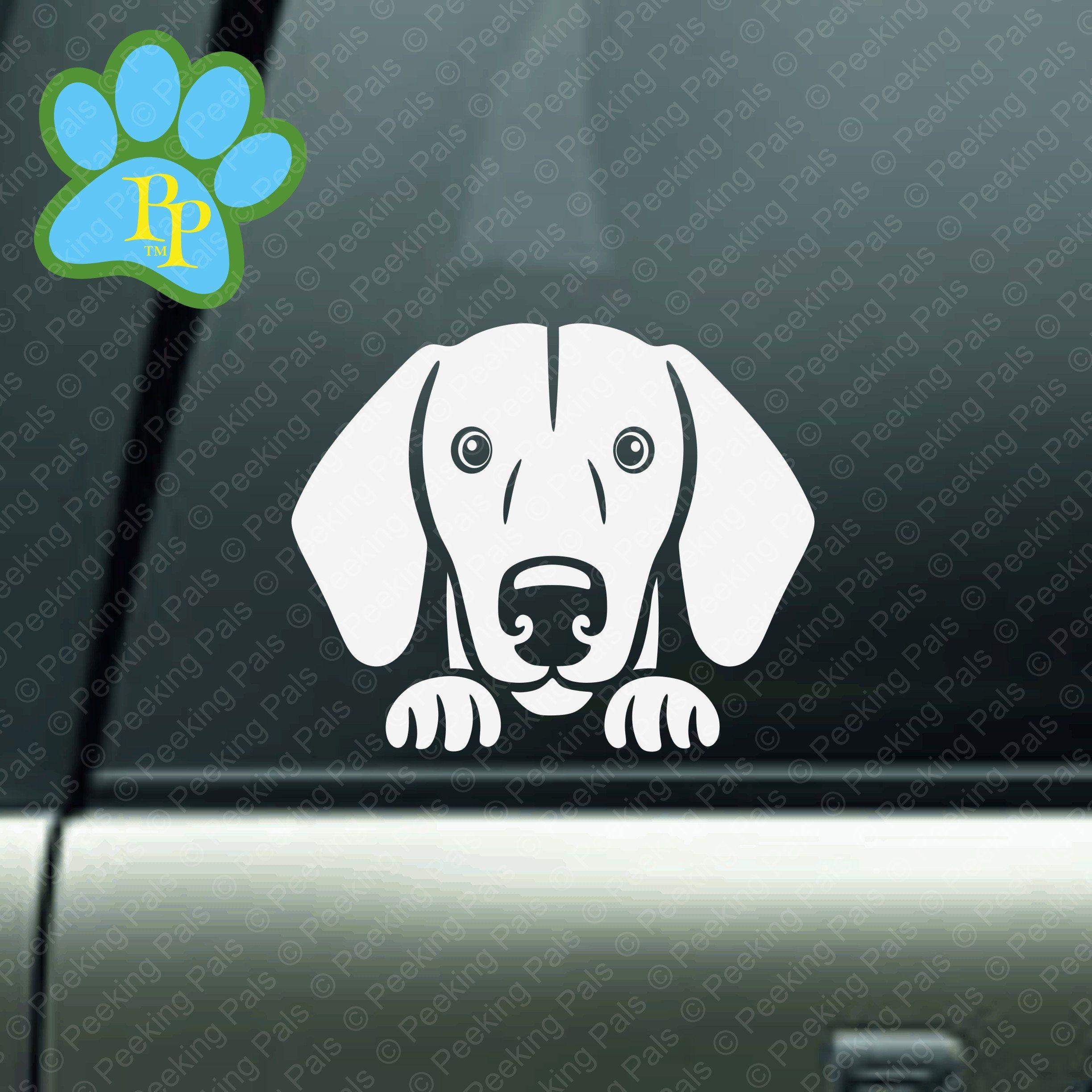 Dachshund Dog Decal Peeking Dachshund Dog Decal For Cars Etsy Dog Decals Dachshund Dog Dog Gifts [ 2447 x 2447 Pixel ]