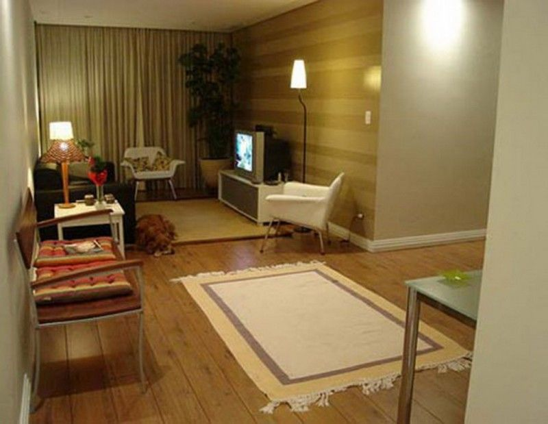 Apartment Decorating Ideas Modern Living Room Pretty Design For A Small Space