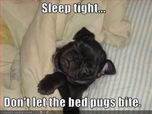 Goodnight Sleep Tight Pugs Funny Cute Pugs Pugs