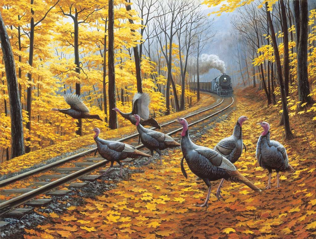 Turkey Tracks 500pc Jigsaw Puzzle By Sunsout (discon