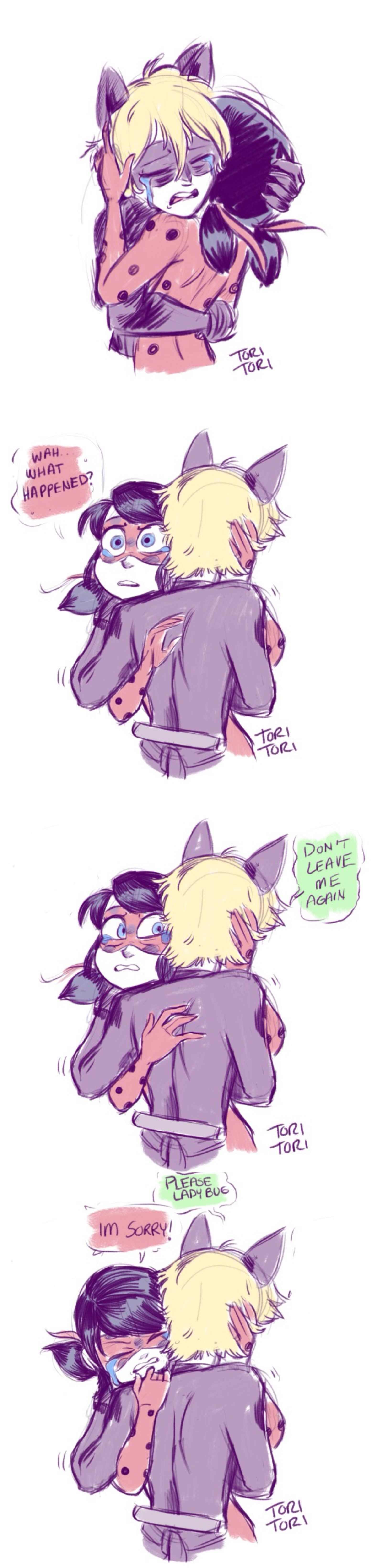 If something happened, and Ladybug got separated from Chat Noir, supposedly for good.