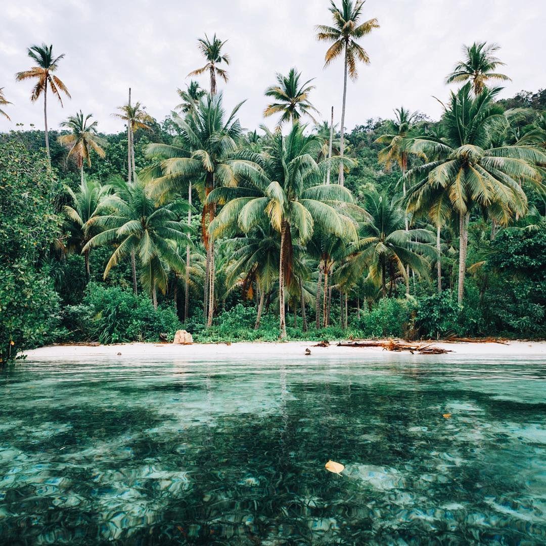 Tropical Island Paradise: Tropical Island Adventures :: Escape To A Beach Paradise