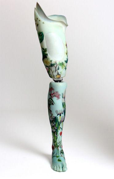 (c) the alternative limb project