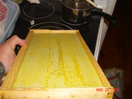 Adding Wax To Plasticell Frames - Show Me The Honey! - Christopher Beeson - Beekeeper Blog - St Louis Missouri