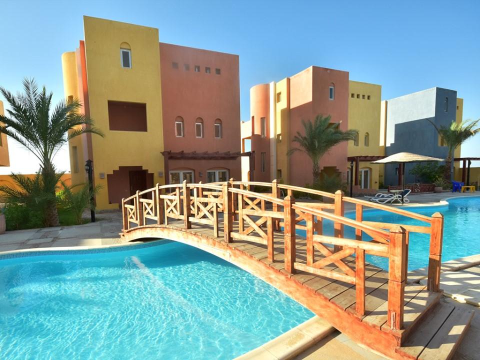 اخبار مصر بوابة الغد House Styles Outdoor Decor Mansions