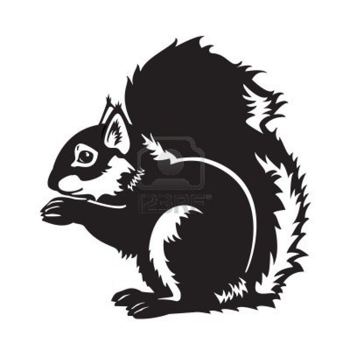 Eichhörnchen | Животные | Pinterest | Eichhörnchen, Silhouetten und ...