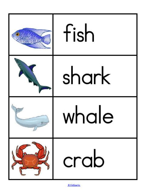 Oceans Animals Theme Activities And Printables For Preschool And Kindergarten Ocean Animals Preschool Ocean Activities Preschool Ocean Theme Preschool