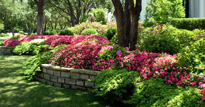 Texas Landscape Design Frisco Plano Landscape Design Landscape Lighting Mckinney Tx Lawn And Landscape Landscape Design Landscaping On A Hill