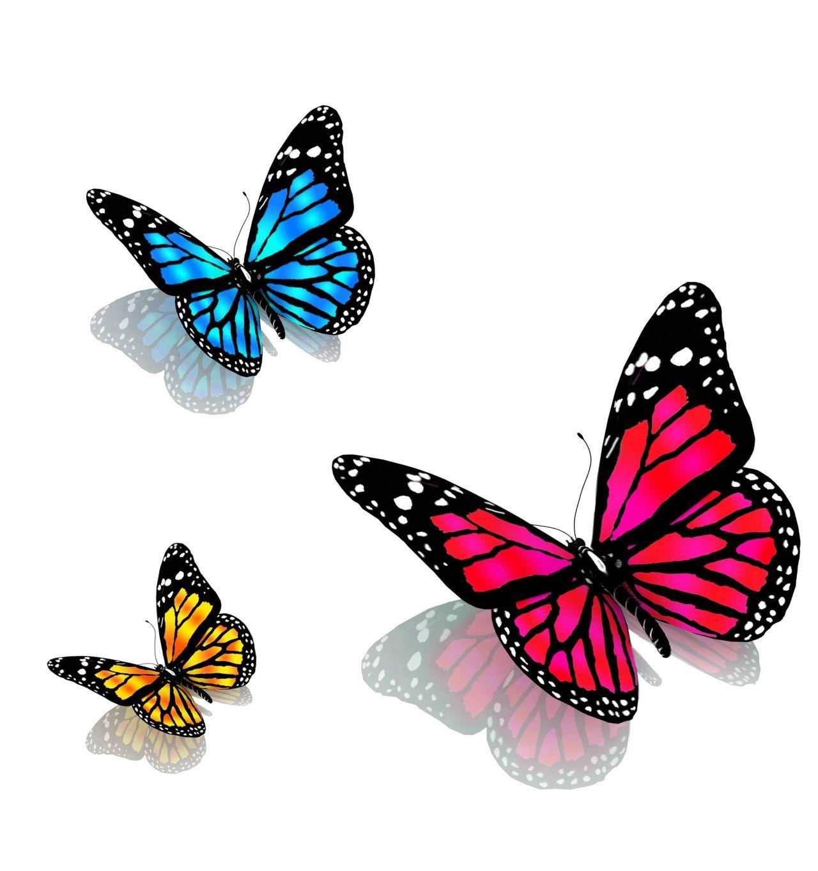 анимированные стая бабочки на прозрачном фоне: 9 тыс ...