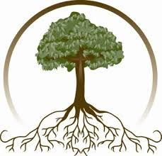 Image result for image of a tree with roots