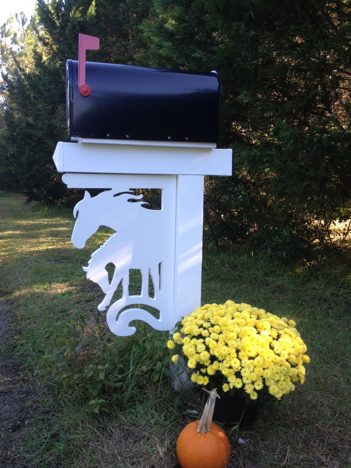 Horse Mail Horse Decor Mailbox Decor Equestrian Decor