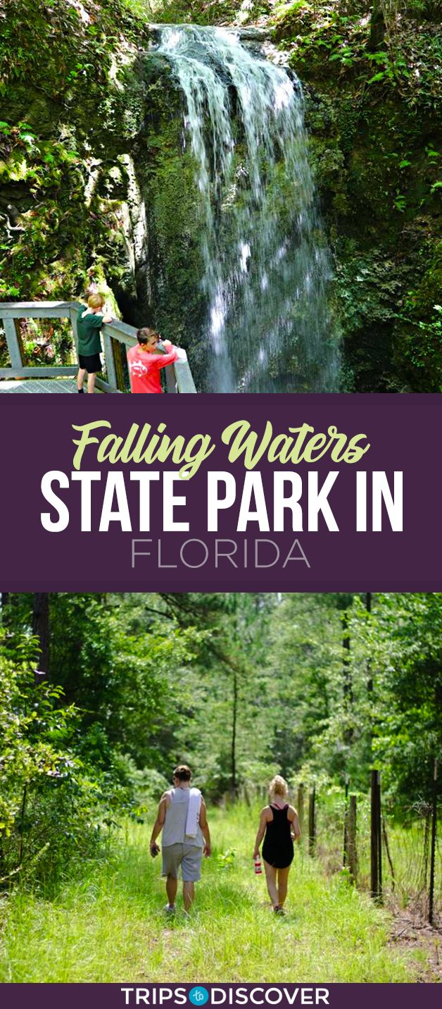 Photo of Explore Nature at Falling Waters State Park in Florida