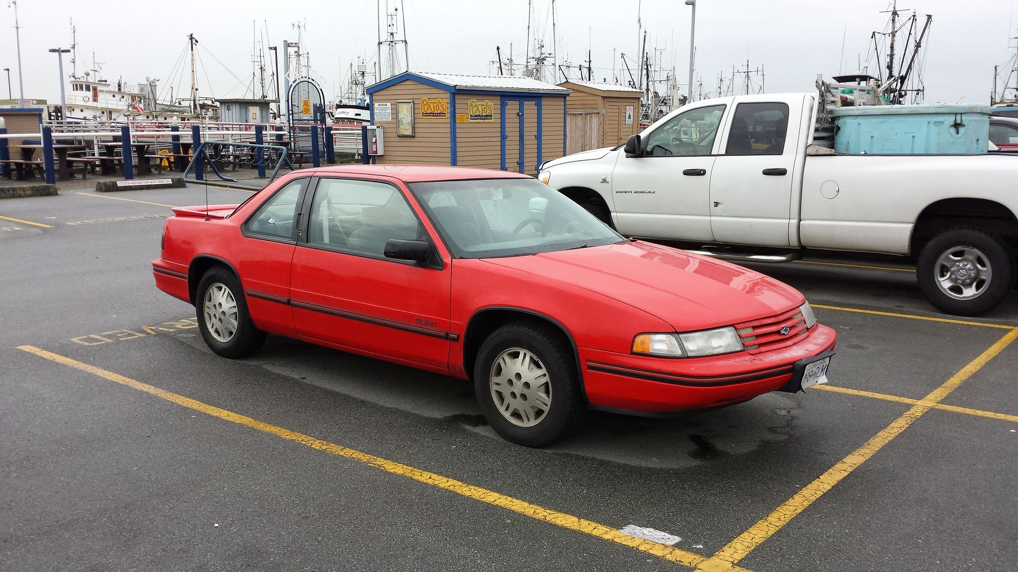 1991-94 Chevy Lumina Euro Coupe Chevrolet Lumina, Chevy, Euro
