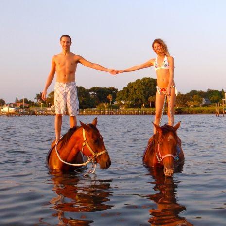 Horse Surfing Bradenton