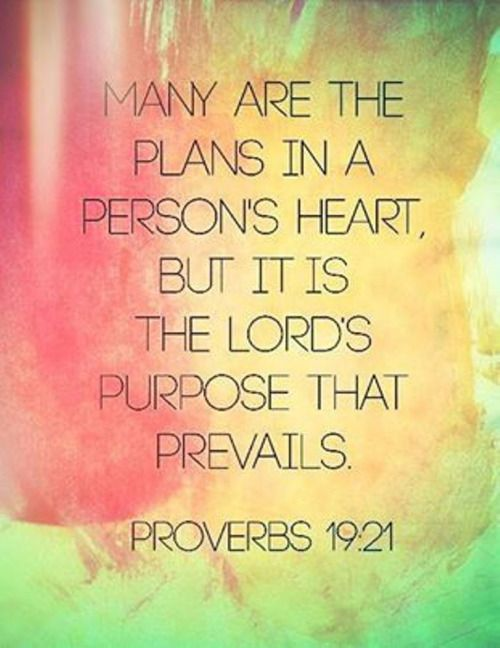 The Living Proverb 19 21 Niv Many Are Plan In A Inspirational Scripture Proverbs Paraphrase Prov 14