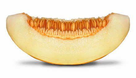 die melone obst pinterest abnehmen kalorien melonen und online magazine. Black Bedroom Furniture Sets. Home Design Ideas