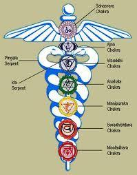 Caduceo,símbolo de la medicina,con los centros de energía o chakras ...